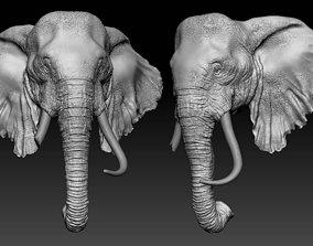 3D model zbrush Elephant Head