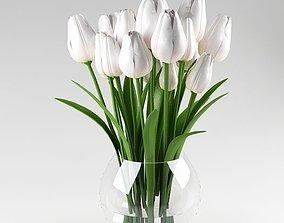 Ornamental plant 09 white tulips 3D model vegetation