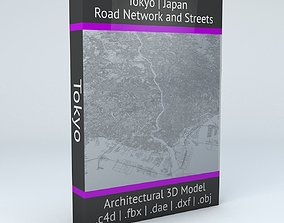 street Tokyo Road Network and Streets 3D model