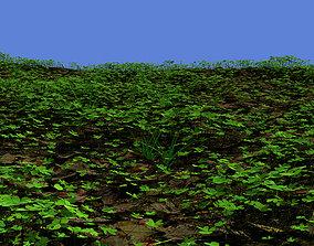 Clover spring field 3D model