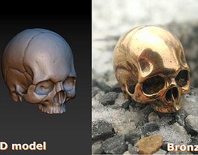skeletal 3D print model Skull
