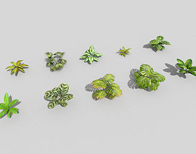 10 low poly tropical foliage pack 3D model