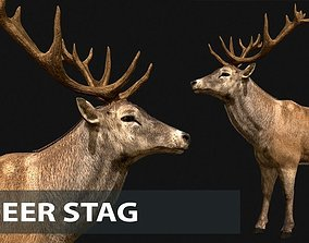 Deer stag 3D asset animated