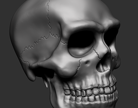 3D printable model CRANEO HUMANO