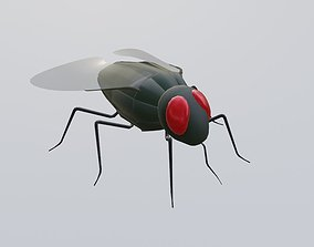 Mosquito - Fly 3D asset