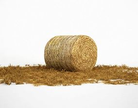 Hay Roll 3D