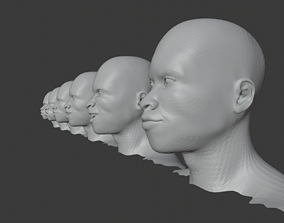 3D Afro male Heads Collection