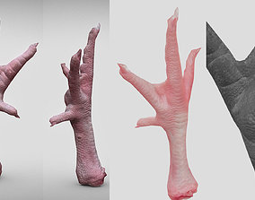 low-poly Raw Chicken feet 3dscan model