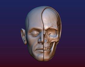 Half Face Skull 3D print model