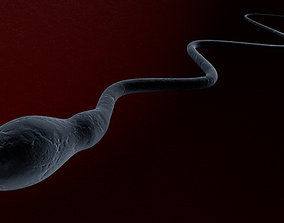 3D Sperm cell swimming to the egg