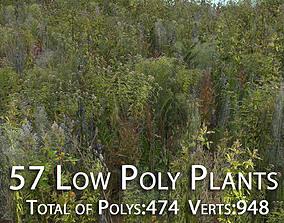 57 Low Poly Plants 3D asset