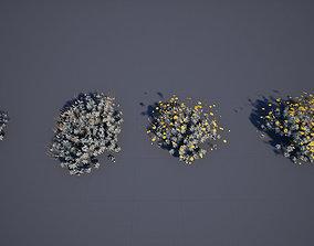 Brittle bush 3D asset low-poly