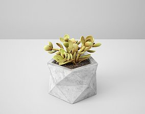 Polyhedral Concrete Potted Cactus 3D
