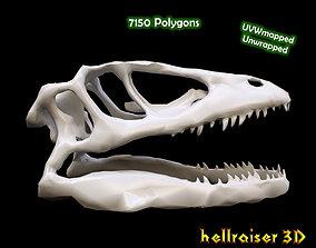 Animal Skull 3D model
