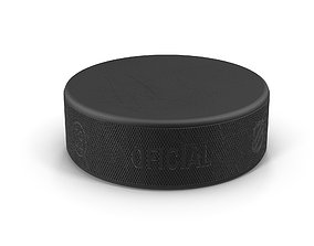 3D model Hockey Puck