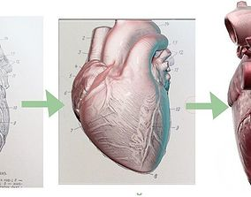 high-poly heart for 3D print