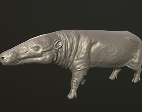 Anthracotherium magnum 3D printable model