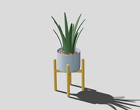 pot-plant Pot plant 3D
