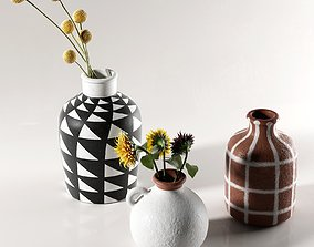 3D Morocco Vases with Flowers