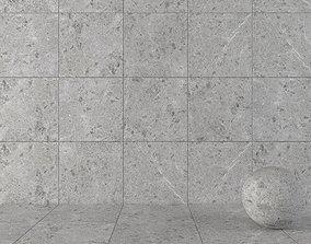 Stone Wall Tiles Sarita Grey 80x80 3D model