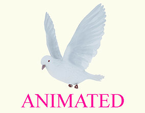 Animated flying realistic white dove bird 3D asset