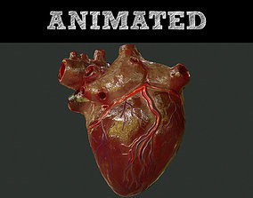 3D heartbeat Human Heart Animations