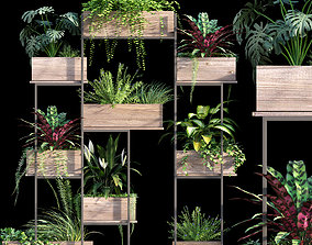 3D Plant set 13