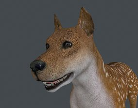 MDOG-002 Animated Male Dog 3D model