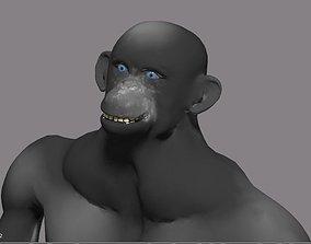 3D model animal chimpanzee animated