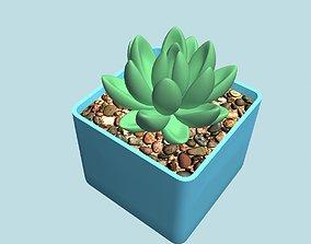 3D printable model Succulent in pot