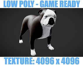 3D asset LOWPOLY Bulldog