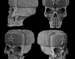 Skull in a Russian hat 3D print model