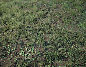 3D asset Grass Pack