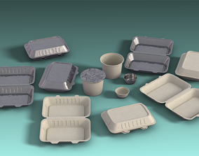 3D model Disposable Container