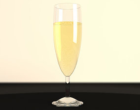 Champagne in a Glass 3D model