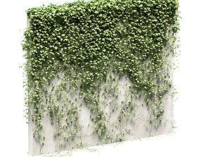 3D Ivy for fence v3