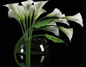 3D model Calla Lily 1