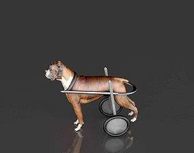 3D Dog Wheelchair