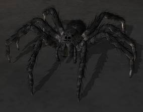 3D rigged spider