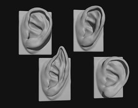 head 3D model EARS 4