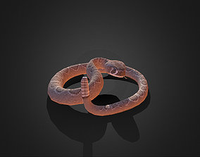 3D asset Low Poly Dessert Rattle Snake