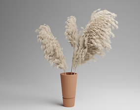 Pampas Grass Plant In Vase 3D