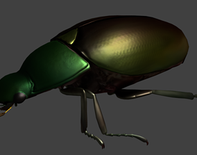3D model Gold Beetle