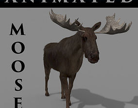animated Virtual Moose 3d model hunt