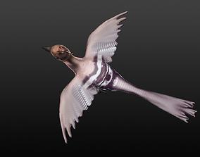 3D hoopie bird