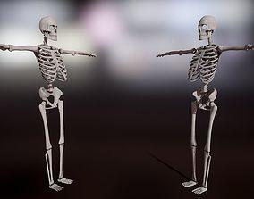 3D model low-poly Skeleton
