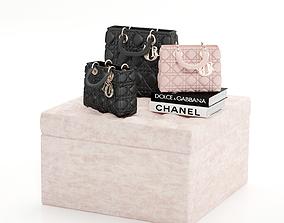 Dior Handbag 3D model lady