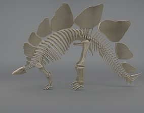 3D model Stegosaurus Skeleton evolution