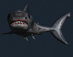 3DRT - Sealife - Shark animated