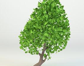 Cartoon tree 3D model rigged